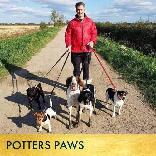 SQUARES • POTTERS PAWS